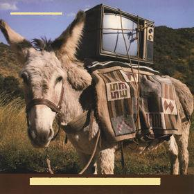 Timbuk 3 - Greetings from Timbuk 3 (1986)