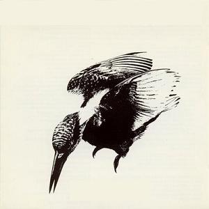 Gygafo - Legend of the Kingfisher (1990)