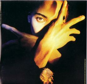 Terence Trent D'Arby - Neither Fish Nor Flesh (1989)