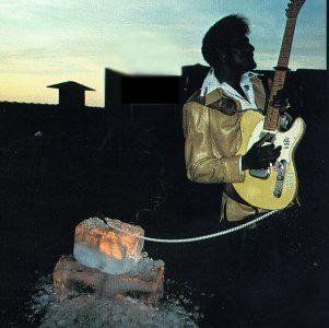 Albert Collins - Ice Pickin' (1978)