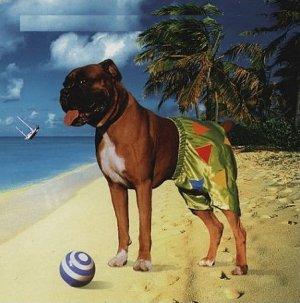 Ian Dury & The Blockheads - Mr. Love Pants (1998)
