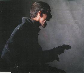 Raymond van het Groenewoud - Liefde voor Muziek (1991)