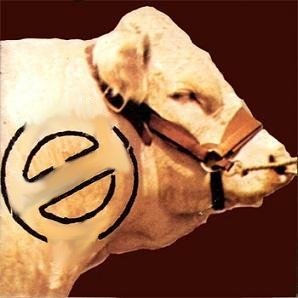 Bintangs - Genuine Bull (1975)