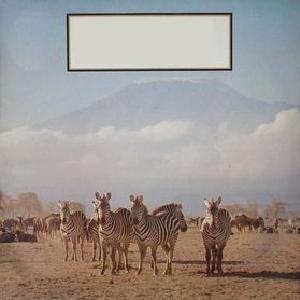 The Teardrop Explodes - Kilimanjaro (1980)