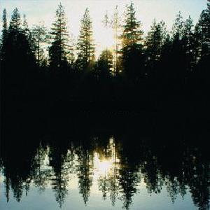 Chuck Ragan - Gold Country (2009)