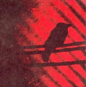 The Silver Mt. Zion Memorial Orchestra & Tra-La-La Band - Born into Trouble as the Sparks Fly Upward (2001)