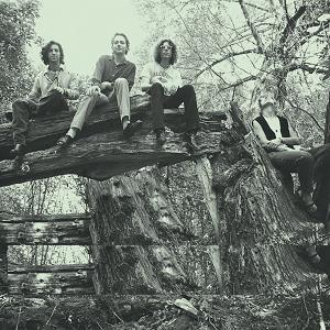 The Jayhawks - Tomorrow the Green Grass (1995)