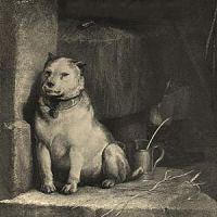 Pavlov's Dog - Pampered Menial (1975)