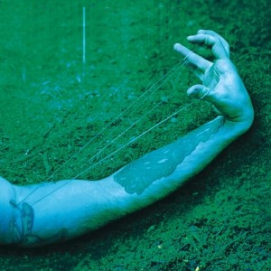 Jerry Cantrell - Degradation Trip (2002)