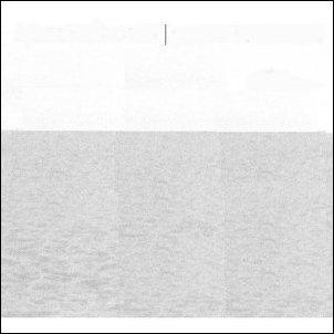 Robert Plant & Alison Krauss - Raising Sand (2007)