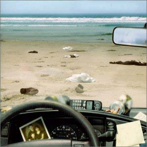 Anathema - A Fine Day to Exit (2001)