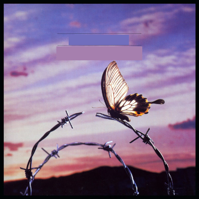 David Knopfler - Cut the Wire (1986)