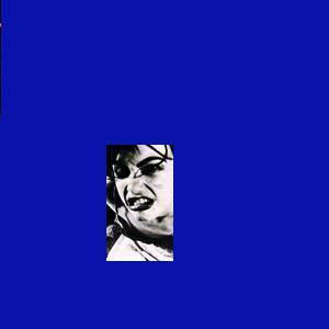 Sonic Youth - Evol (1986)