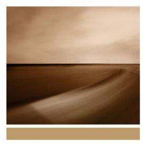 Brian Eno - Small craft on a milk sea (2010)