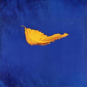 New Order - True Faith (1987)