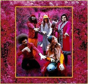 Captain Beefheart & His Magic Band - Grow Fins: Rarities 1965-1982 (1999)