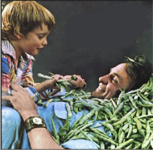 Johnny Cash - Look at Them Beans (1975)