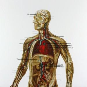 Johan Timman – Trip Into the Body (1981)