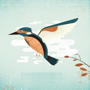 Prawn - Kingfisher (2014)