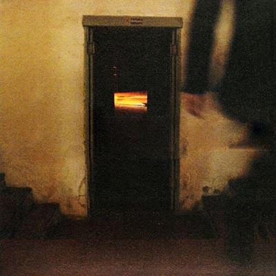 Ludovico Einaudi - Divenire (2006)