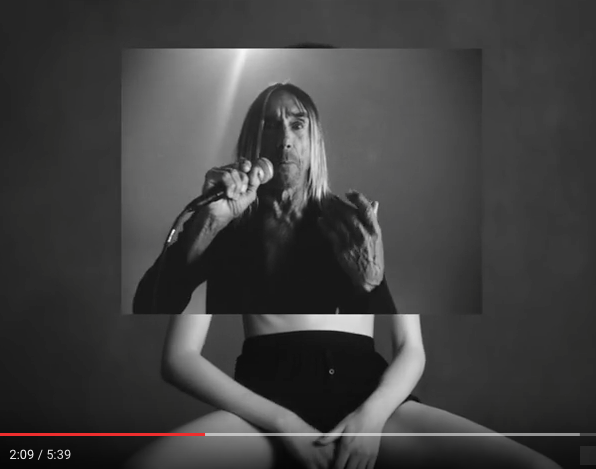 Iggy Pop - American Valhalla (2016)