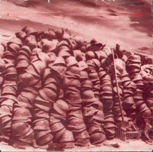 Robert Wyatt & Peter Blackman – Stalin Wasn't Stalling / Stalingrad (1981)
