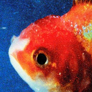 Vince Staples - Big Fish Theory (2017)
