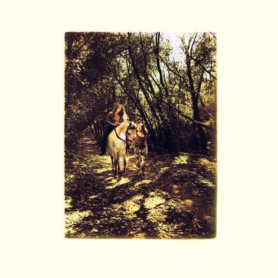 Van Morrison - Tupelo Honey (1971)
